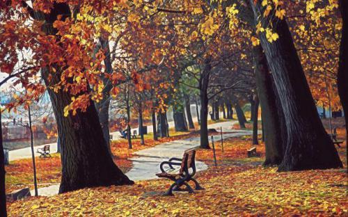 描写秋天的词语图片