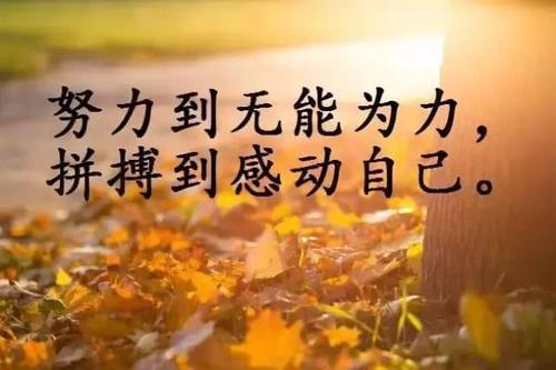 正能量毒鸡汤语录摘抄