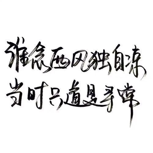 正能量毒鸡汤语录精选50句