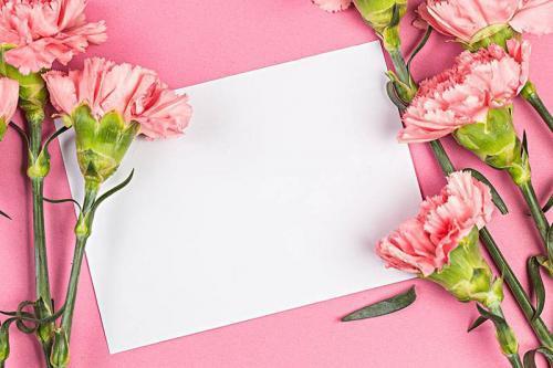 母亲节主题标语精选40句
