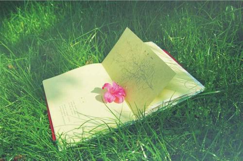 暑假阅读书目清单推荐