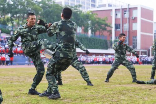 军训每日心得体会大全